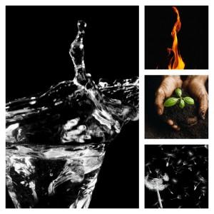 waterhead.jpg